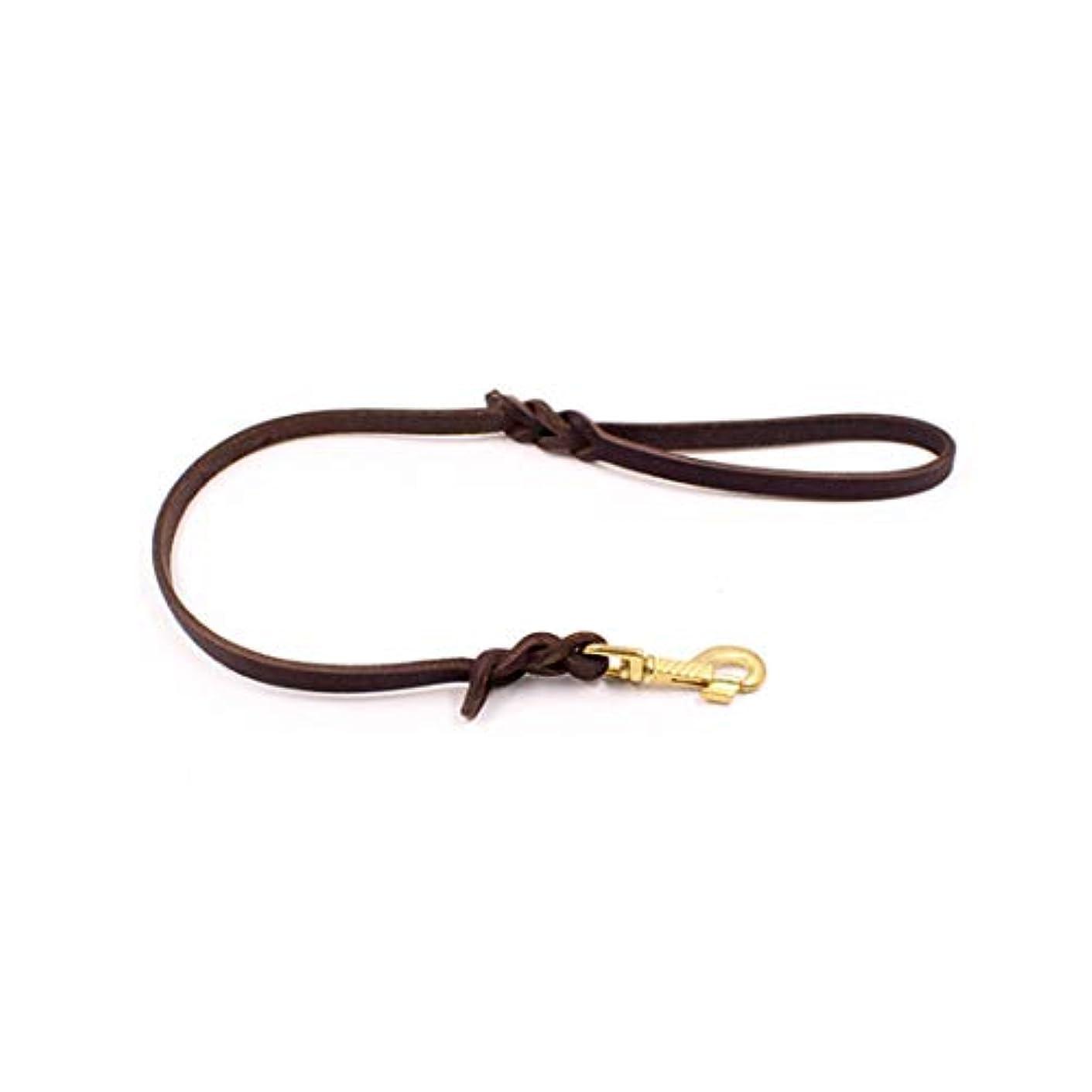 帰る姿勢ささやきJiabei 犬の綱屋外ウォーキングペット犬子犬牽引ロープブラウン優しいリーダー (色 : ブラウン, サイズ : 1.2*100cm)