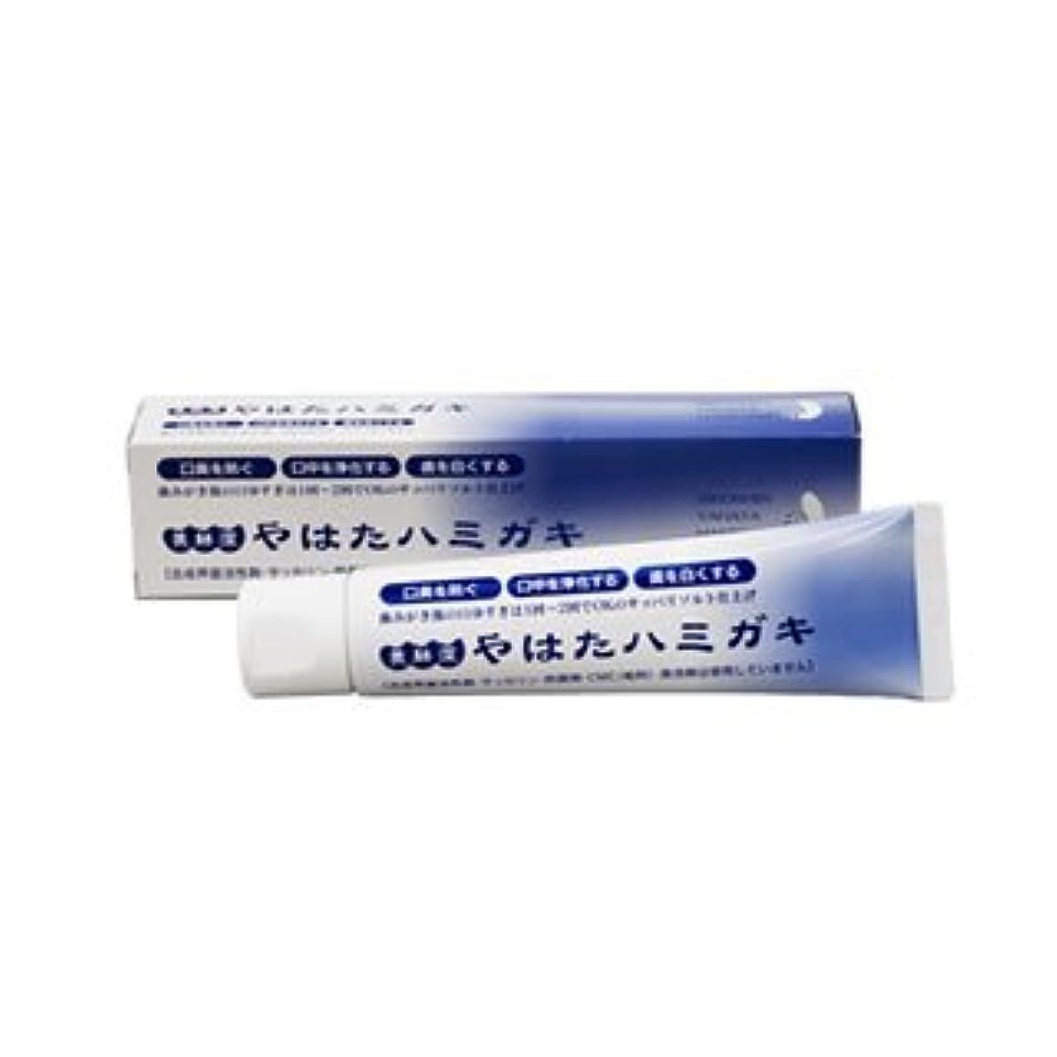 追記意図光沢無添加 歯磨き粉 やはたハミガキ 120g