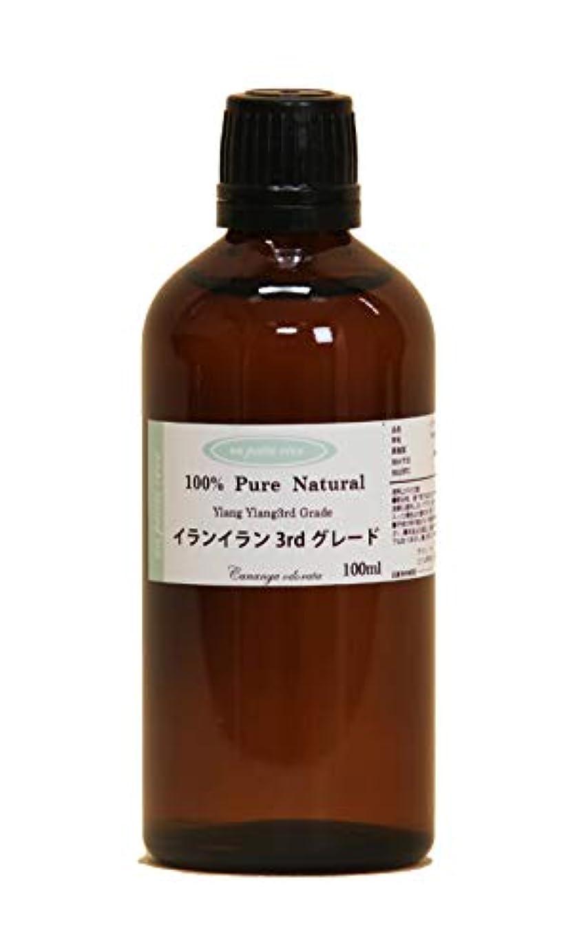 繁栄する熟達した嘆願イランイラン3rdグレード 100ml 100%天然アロマエッセンシャルオイル(精油)