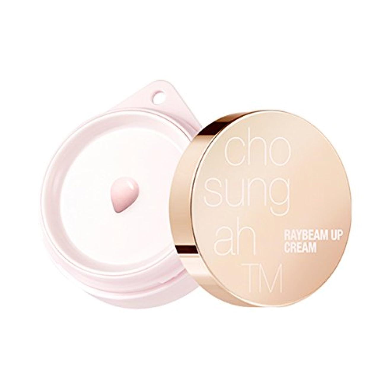 申し立て邪魔するアカウント(ジョソンア) Chosungah Raybeam Up Cream Season 2 SPF30/PA++ 14ml (14ml) [並行輸入品]