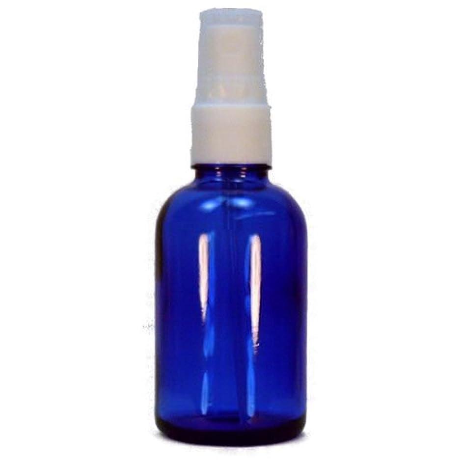 熱心なフィッティングプレビスサイトスプレーボトル ブルー 30ml 6本セット