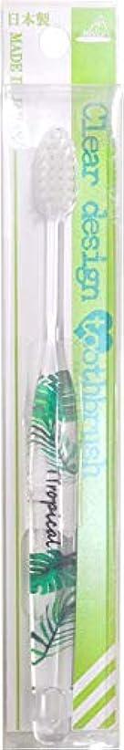黄ばむ分析する放棄するクリアデザイン歯ブラシ (D)