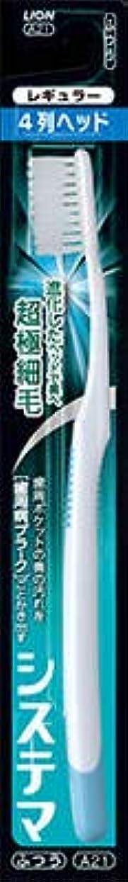 平手打ち受賞豊かな【まとめ買い】システマハブラシ レギュラー4列 ふつう 1本 ×12個