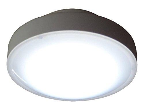 山善 LEDミニシーリングライト 昼白色 MLC-101N