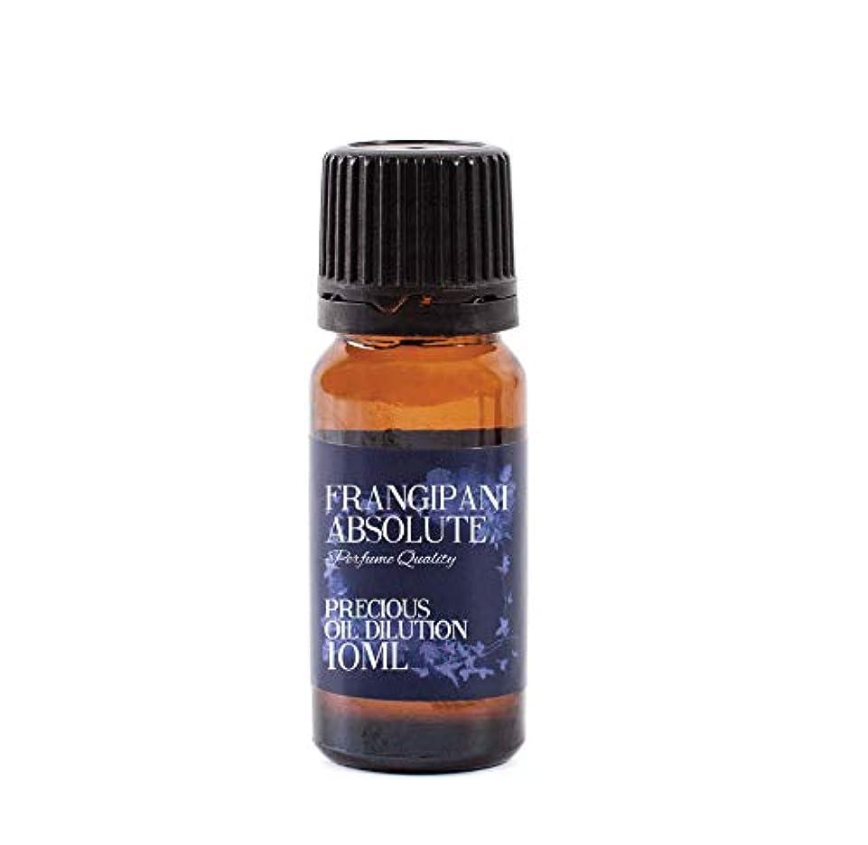 医薬レモン失うFrangipani PQ Absolute Oil Dilution - 10ml - 3% Jojoba Blend
