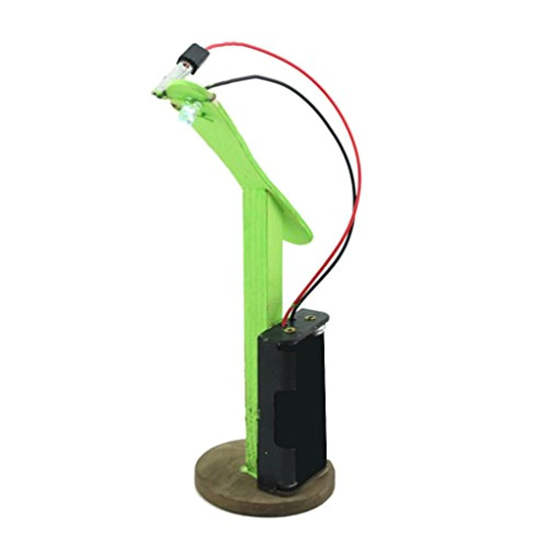 B Blesiya LED省エネランプモデル DIY科学玩具 組み立ておもちゃ 教育玩具