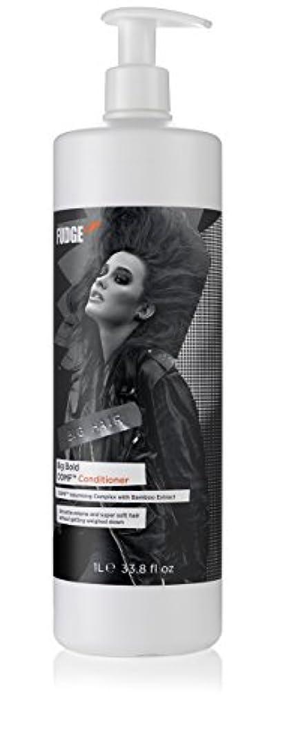 意味疑い者スーダンBig Bold OOMF Conditioner (For Fine Hair)[並行輸入品]