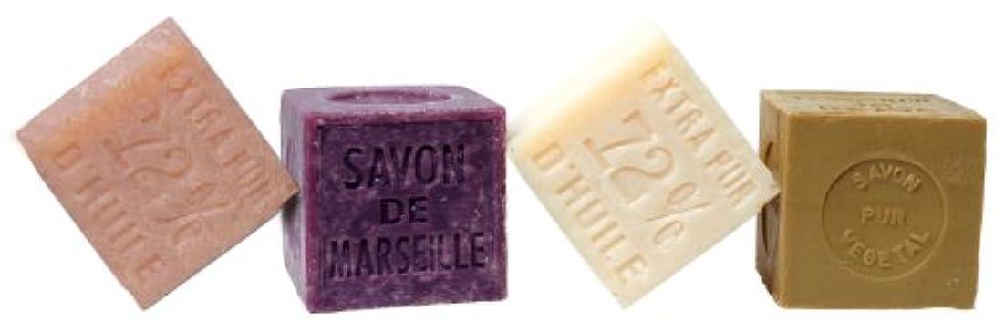 ハードウェア中に主人Plantes&Parfums [プランツ&パルファム] マルセイユソープ400g オリーブオイル