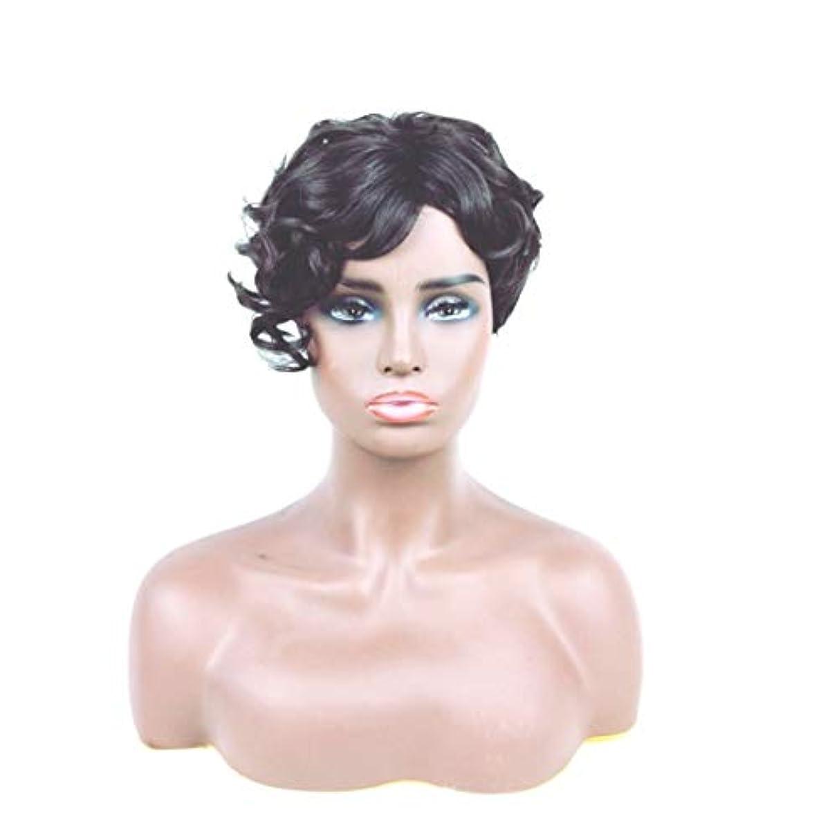 から聞くトランザクション綺麗なKerwinner ショートカーリーヘアウィッグ人工毛フルウィッグ自然に見える耐熱性女性用