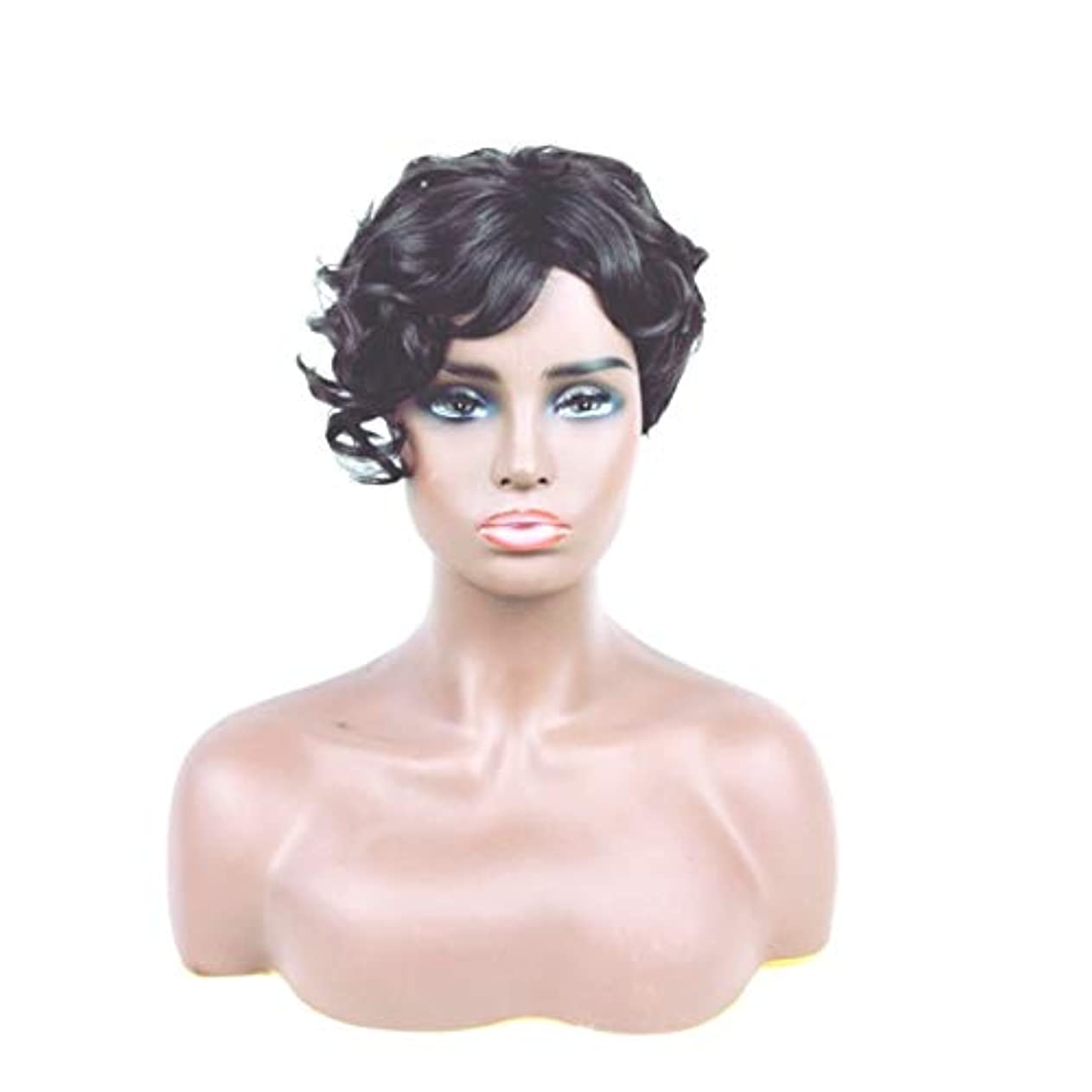 層聴覚広告するKerwinner ショートカーリーヘアウィッグ人工毛フルウィッグ自然に見える耐熱性女性用