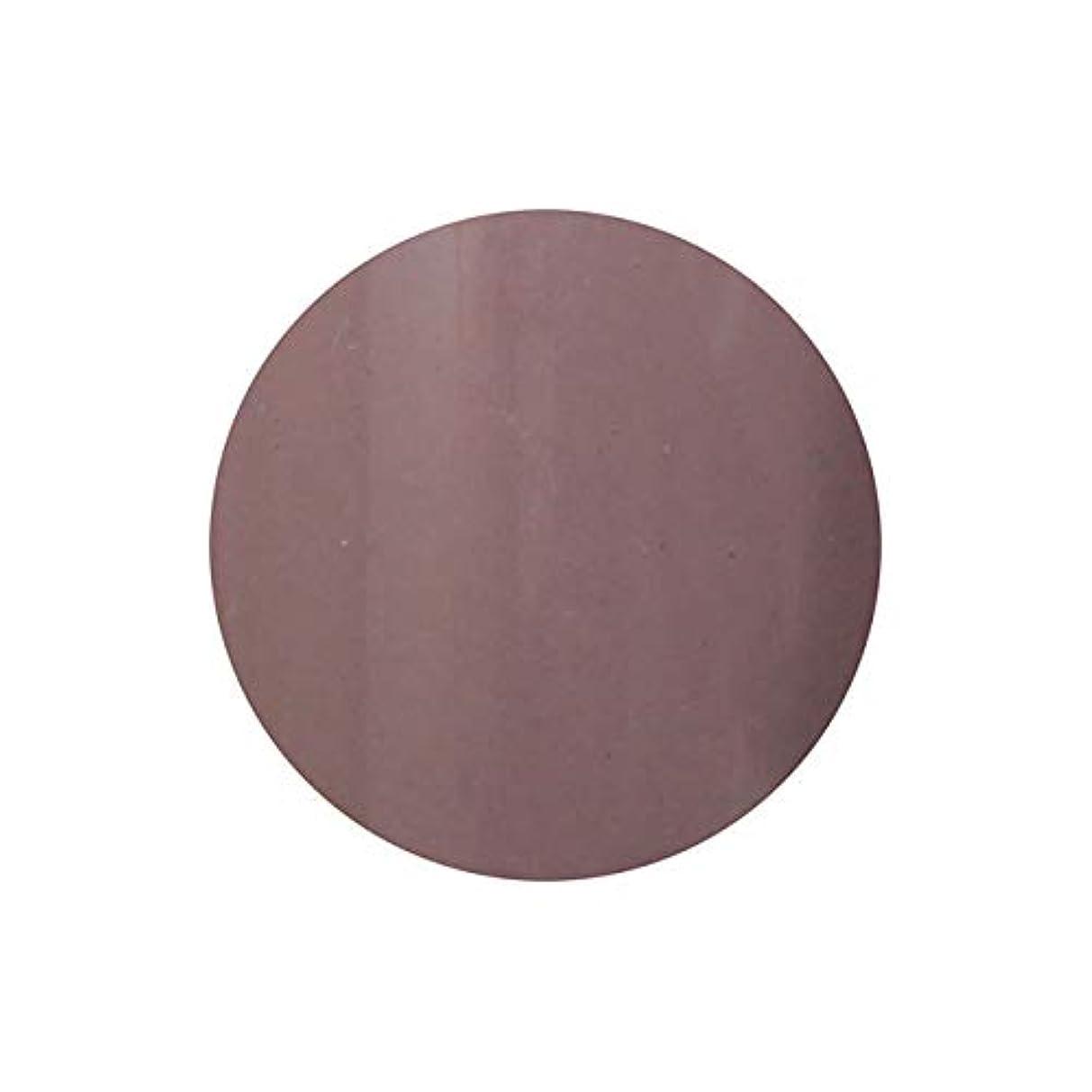 アルミニウムスパーク表示【NEW】T-GEL COLLECTION カラージェル D221 モカグレージュ 4ml