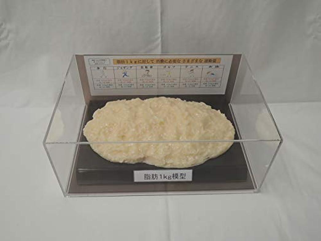 グロー断片リーン脂肪模型 フィギアケース入 1kg ダイエット 健康 肥満 トレーニング フードモデル 食品サンプル