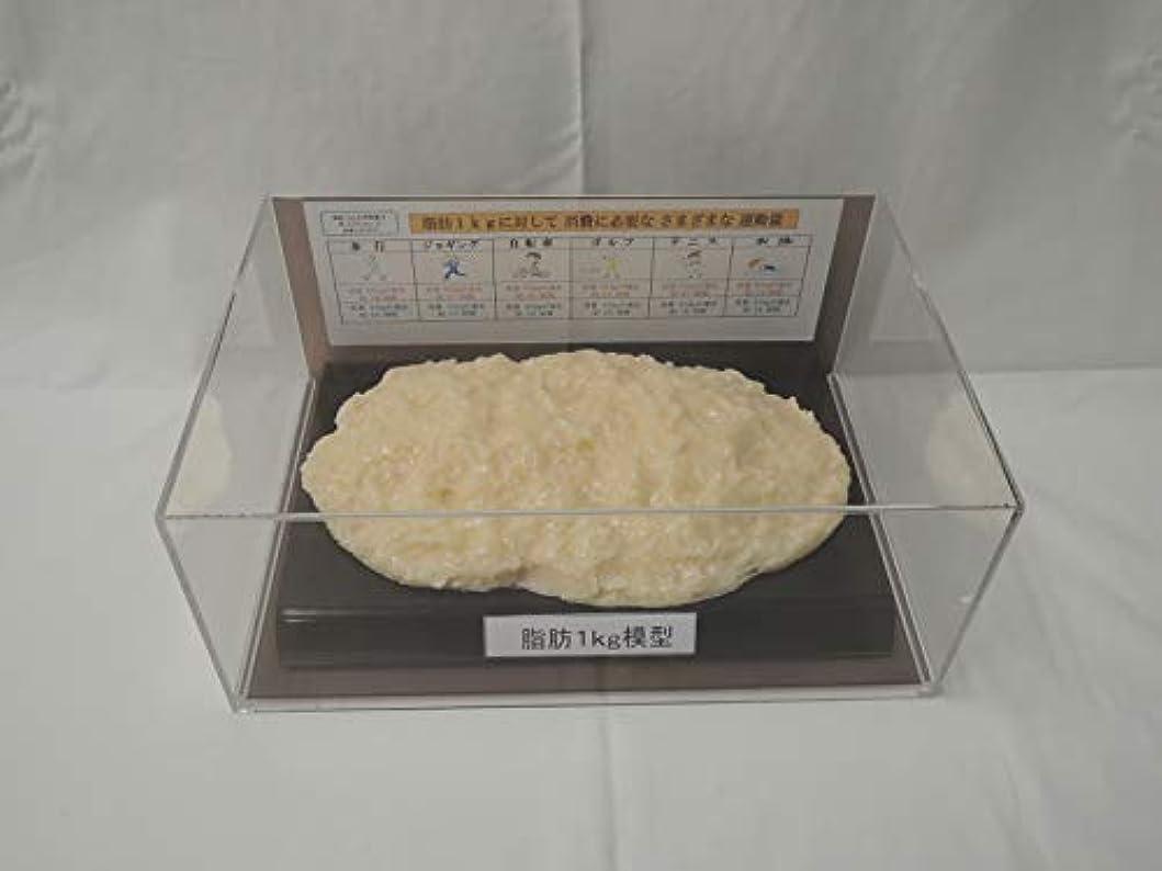 存在汚染された艦隊脂肪模型 フィギアケース入 1kg ダイエット 健康 肥満 トレーニング フードモデル 食品サンプル