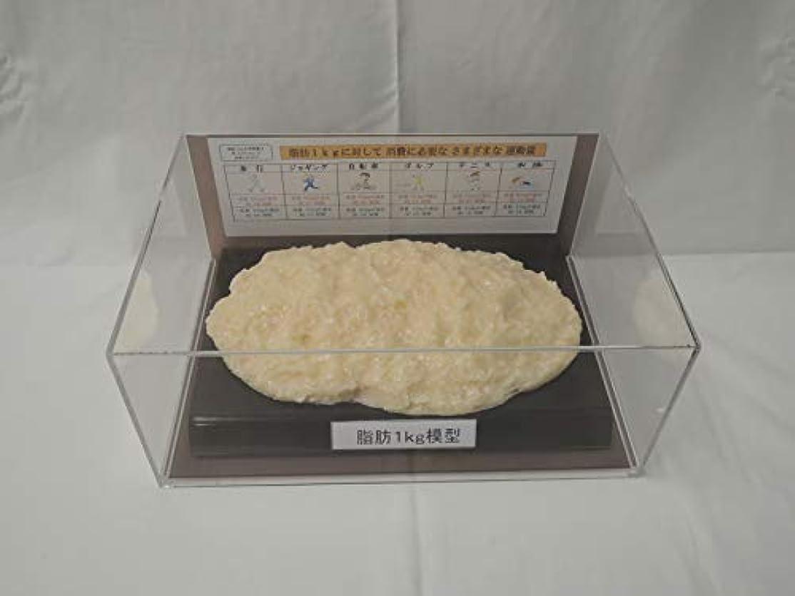 バーチャル鉄かんがい脂肪模型 フィギアケース入 1kg ダイエット 健康 肥満 トレーニング フードモデル 食品サンプル
