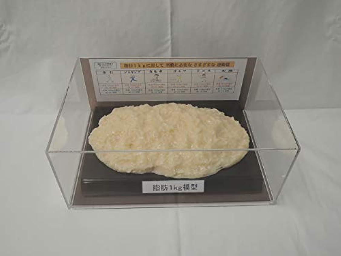 ファセット残る申請中脂肪模型 フィギアケース入 1kg ダイエット 健康 肥満 トレーニング フードモデル 食品サンプル