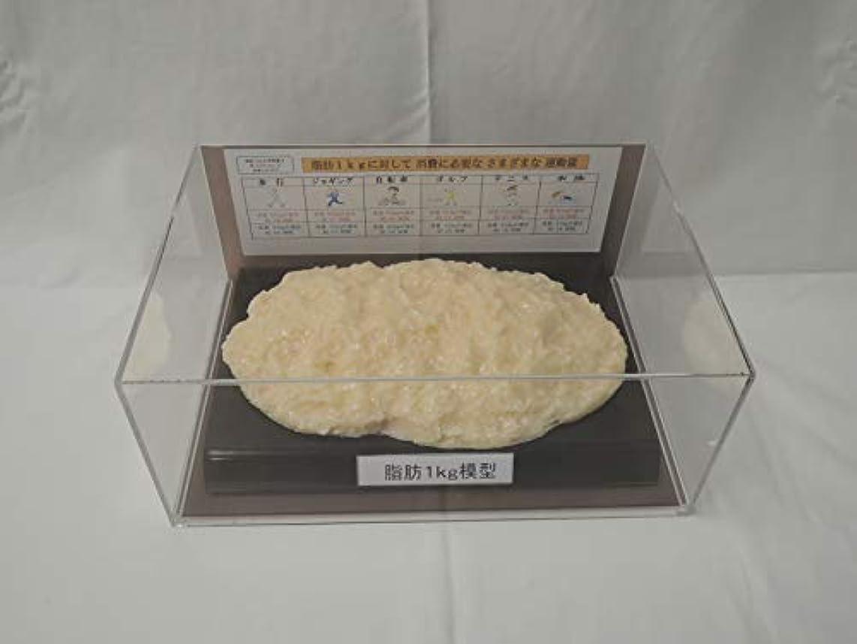 苦難キャラバン悪質な脂肪模型 フィギアケース入 1kg ダイエット 健康 肥満 トレーニング フードモデル 食品サンプル