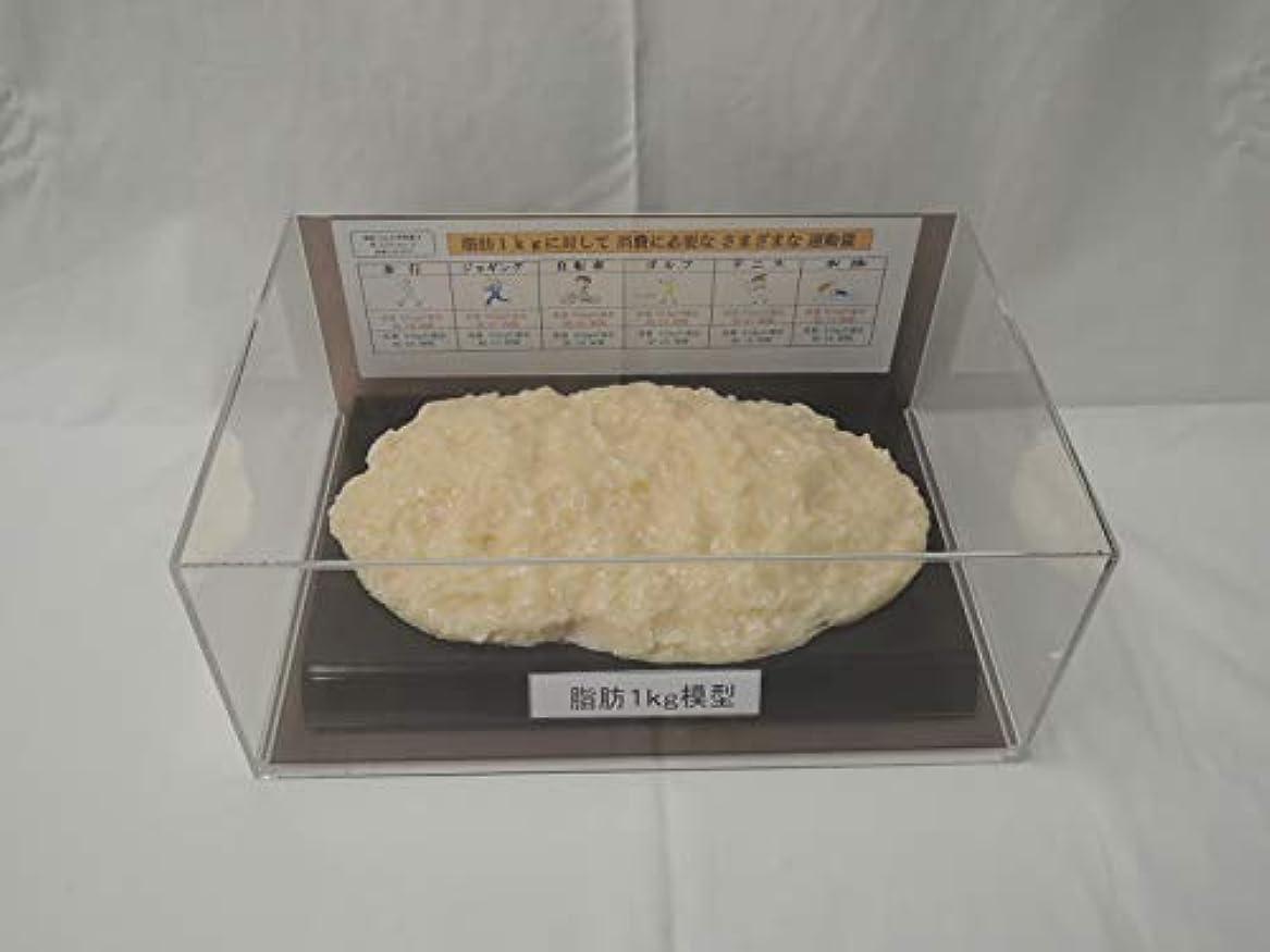 脂肪模型 フィギアケース入 1kg ダイエット 健康 肥満 トレーニング フードモデル 食品サンプル