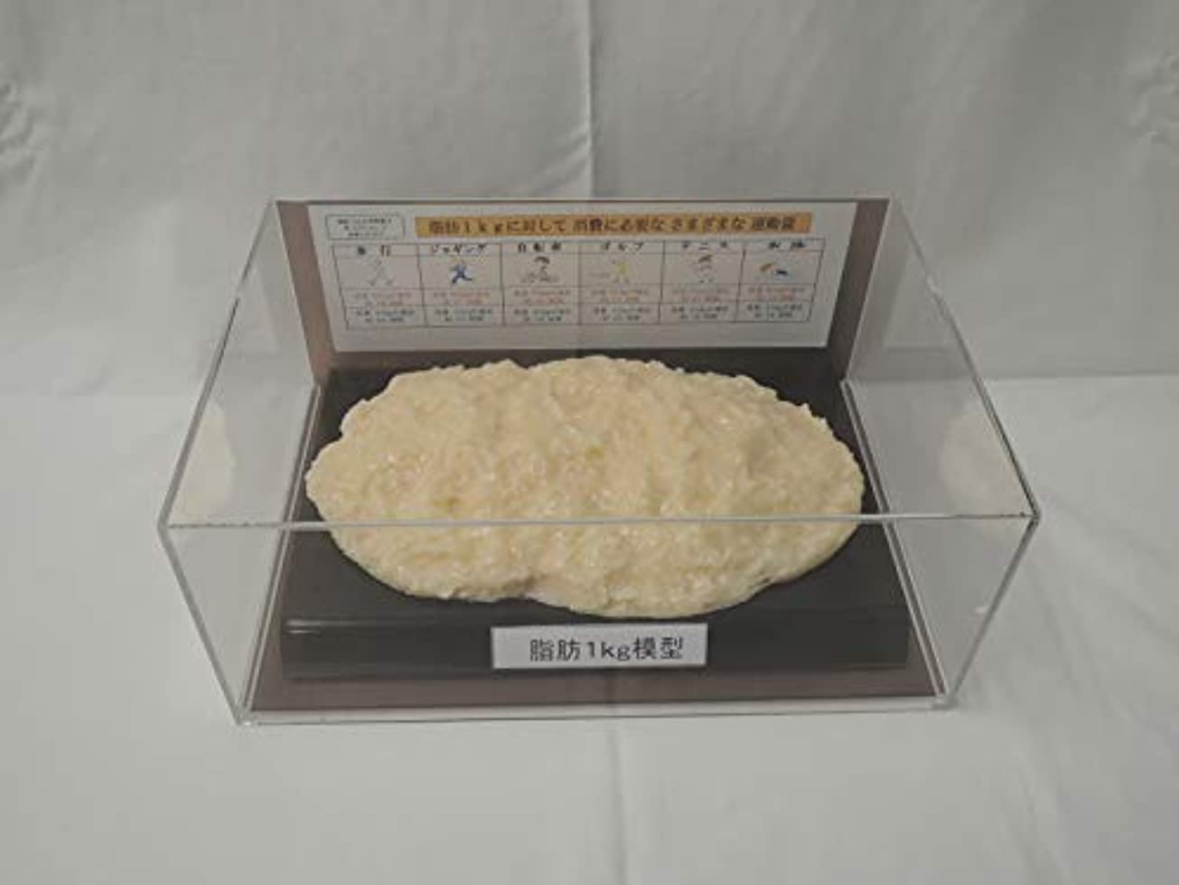 特派員グロー汚れる脂肪模型 フィギアケース入 1kg ダイエット 健康 肥満 トレーニング フードモデル 食品サンプル