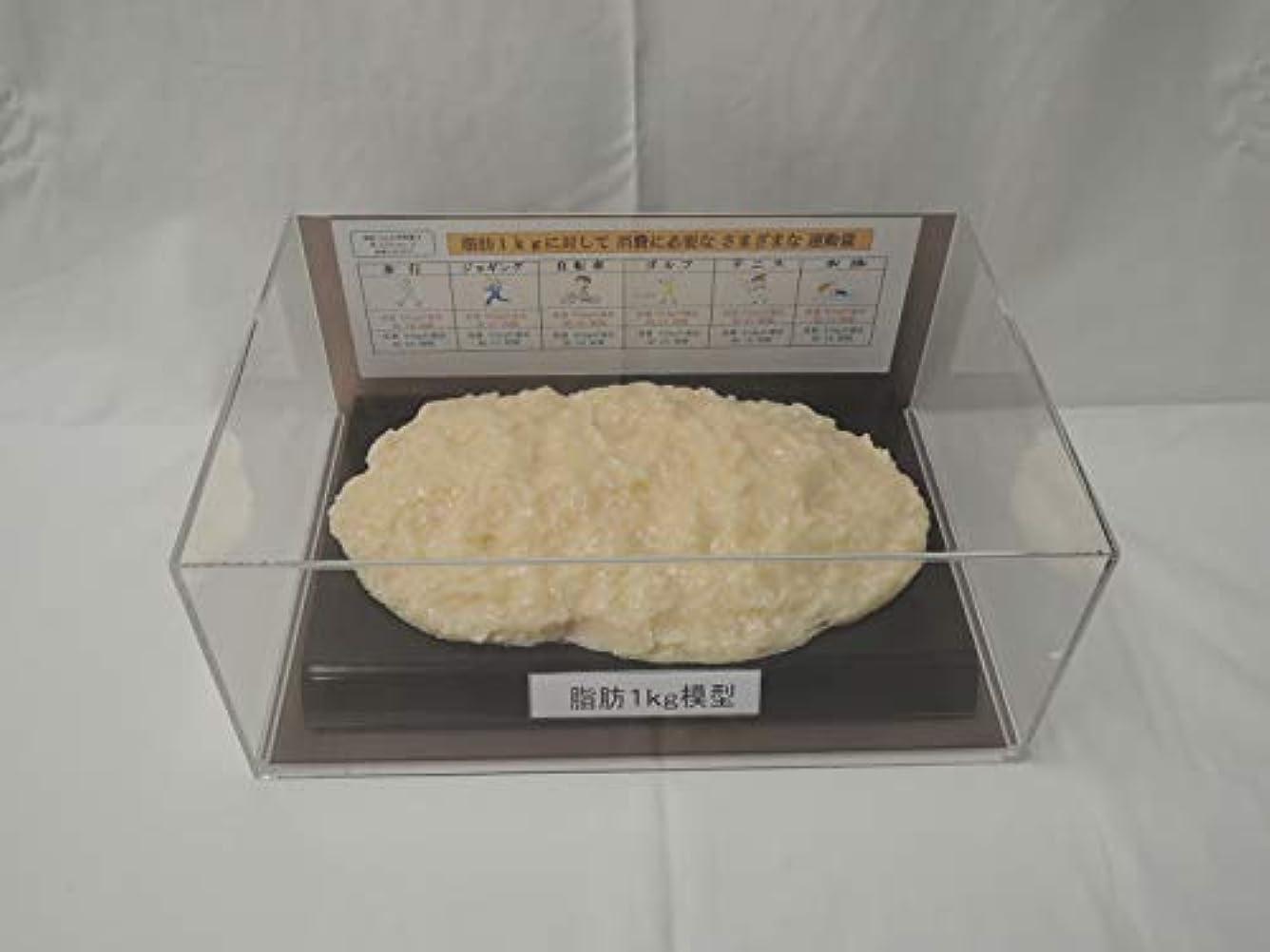 ロードハウススワップ探す脂肪模型 フィギアケース入 1kg ダイエット 健康 肥満 トレーニング フードモデル 食品サンプル