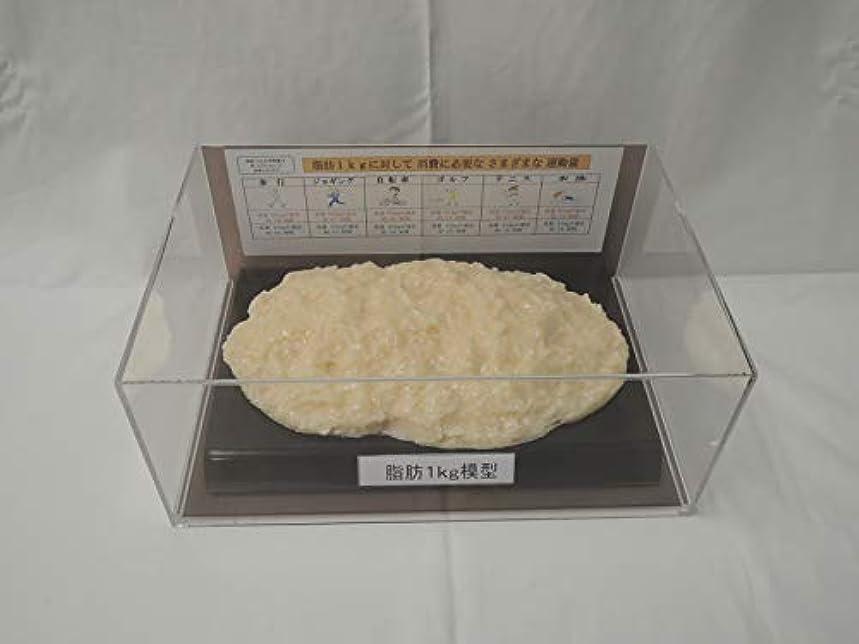 スプリットシアー群衆脂肪模型 フィギアケース入 1kg ダイエット 健康 肥満 トレーニング フードモデル 食品サンプル