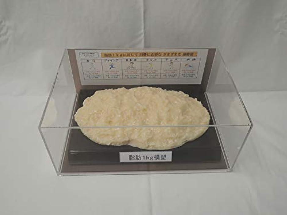 目立つガソリン消費脂肪模型 フィギアケース入 1kg ダイエット 健康 肥満 トレーニング フードモデル 食品サンプル