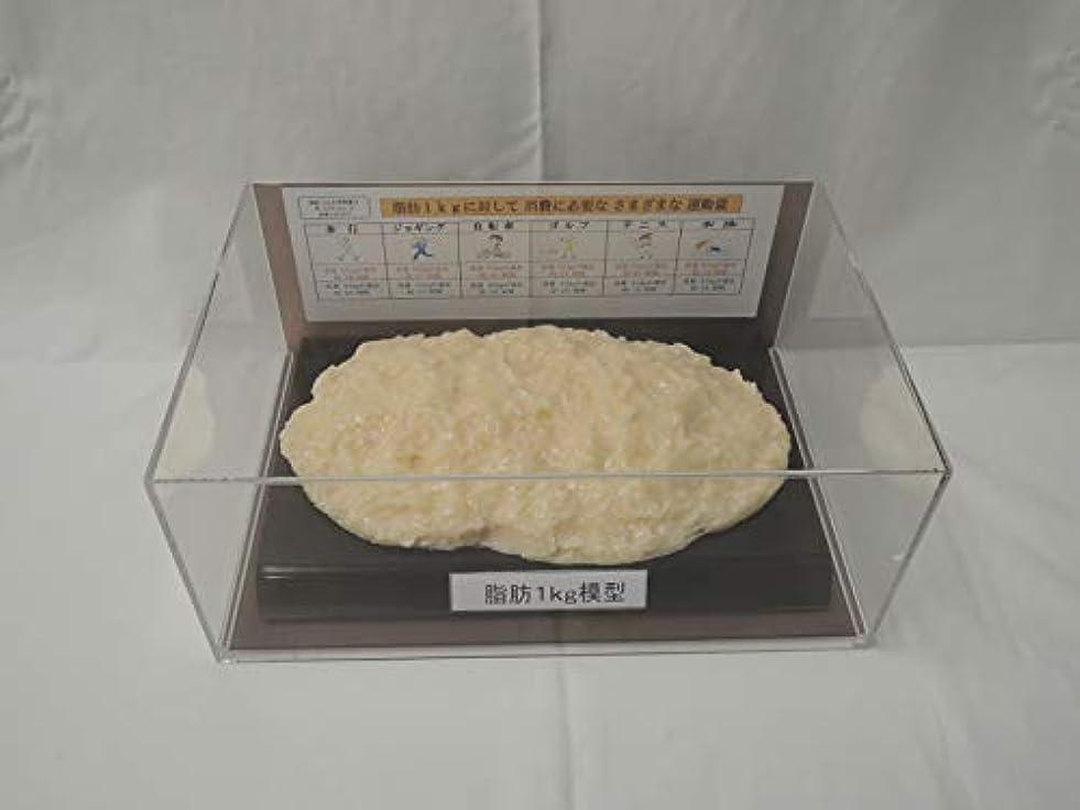 有効センチメンタルハーブ脂肪模型 フィギアケース入 1kg ダイエット 健康 肥満 トレーニング フードモデル 食品サンプル