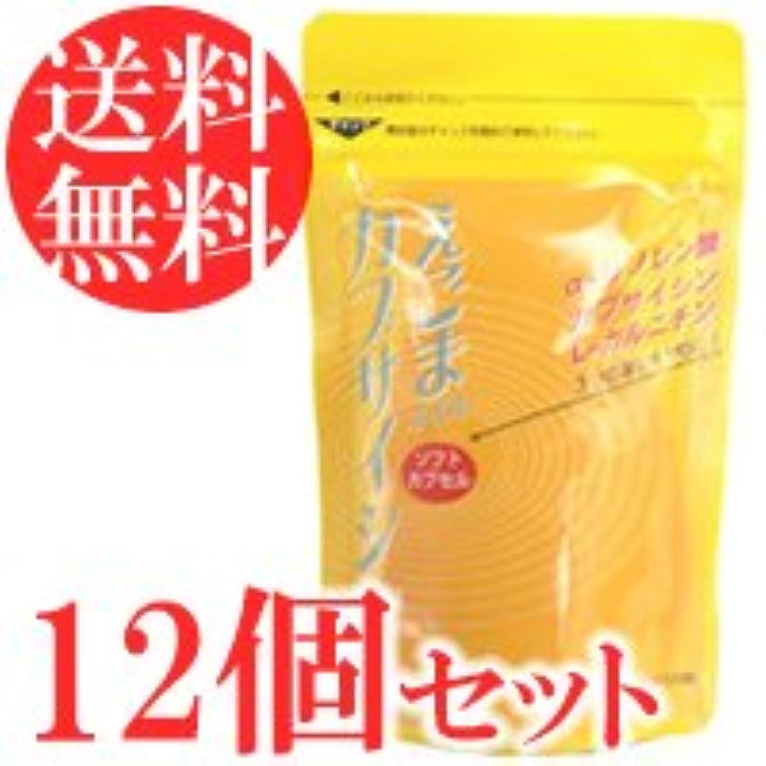 メール家庭ガスえごまオイル カプサイシン 120粒×12袋セット(ソフトカプセル)
