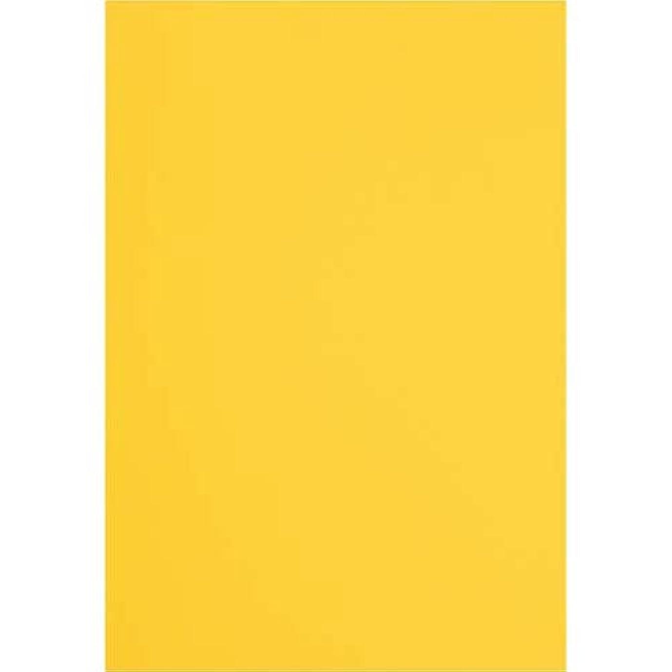 器官振りかける哺乳類カウネット 色画用紙 四つ切 100枚 みかん