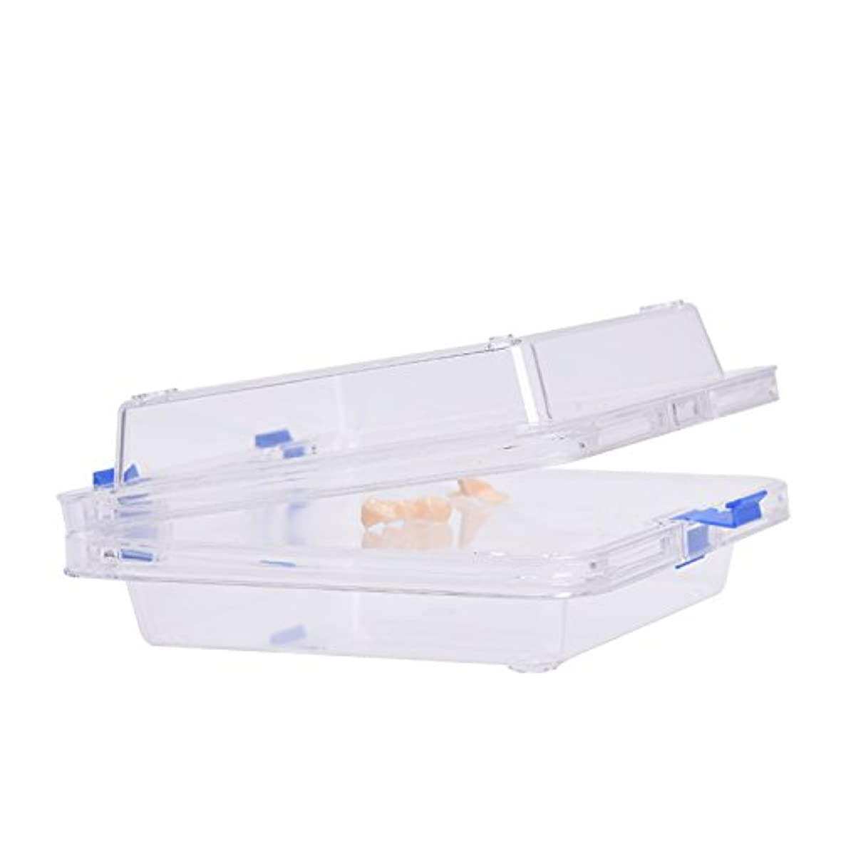 北極圏切り離す関与する入れ歯入れケース防振膜付き サイズ:9.5 * 9.5 * 5cm  義歯ケース Annhua