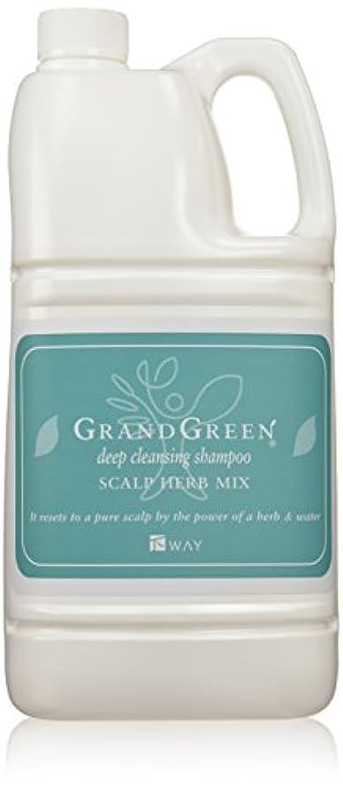 遺伝的しなやかなタイマーニューウェイジャパン グラングリーン ディープクレンジングシャンプー 2000ml