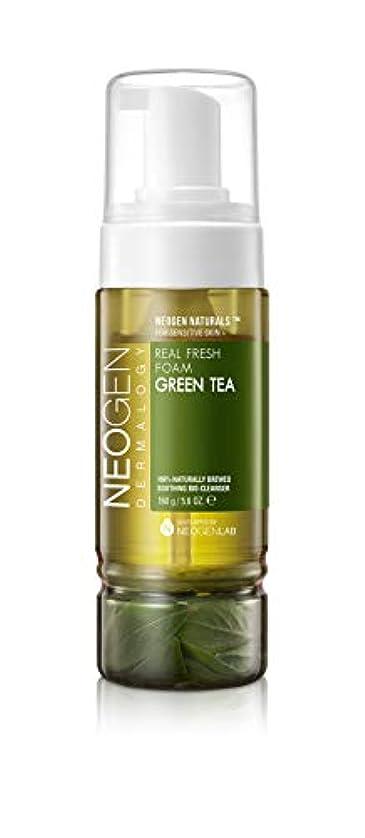 大騒ぎバウンス空白[ NEOGEN] ネオジェンダーマロッジリアルフレッシュフォーム (Green Tea)