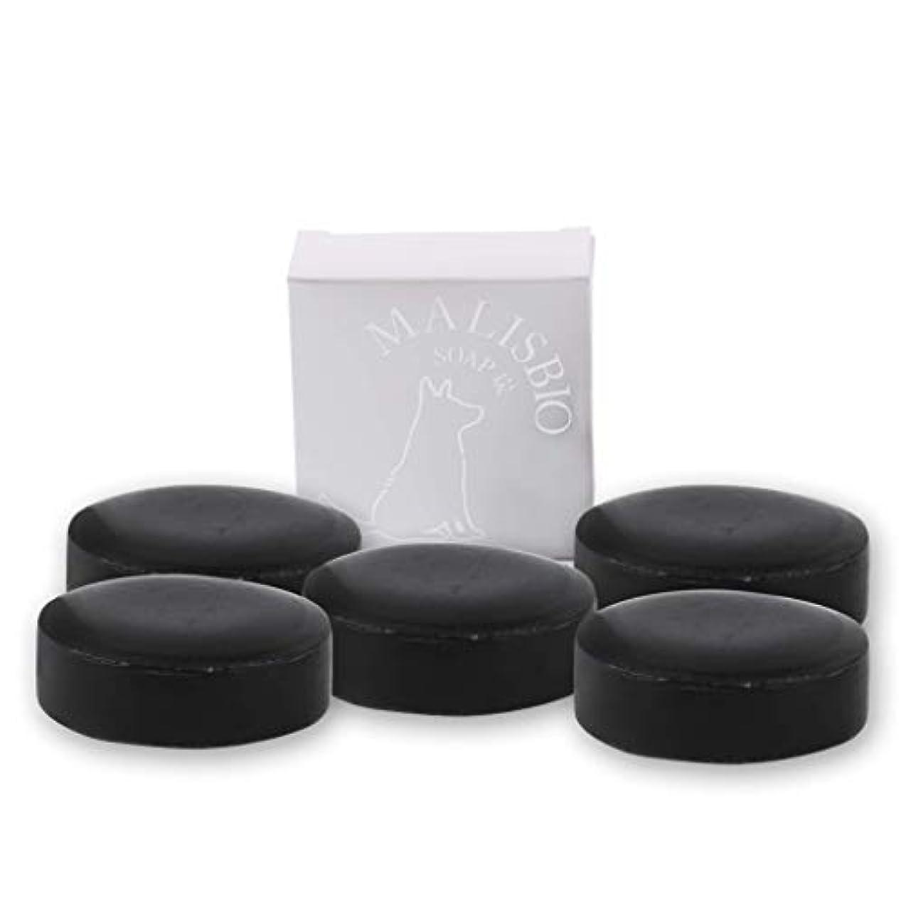 【送料無料】炭石鹸 たっぷりお得な100g × 5個 においを忘れる! 男のデオドラント 固形 炭ソープ メンズ マリスビオ 5個組