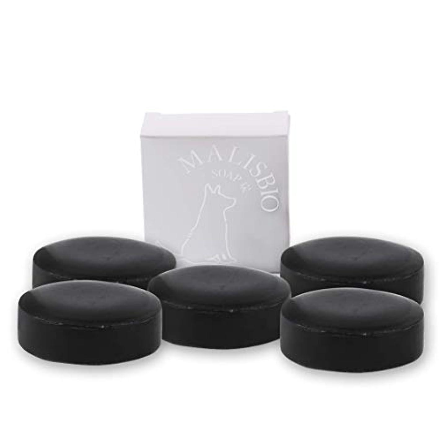 インデックスドナーチェスをする【送料無料】炭石鹸 たっぷりお得な100g × 5個 においを忘れる! 男のデオドラント 固形 炭ソープ メンズ マリスビオ 5個組
