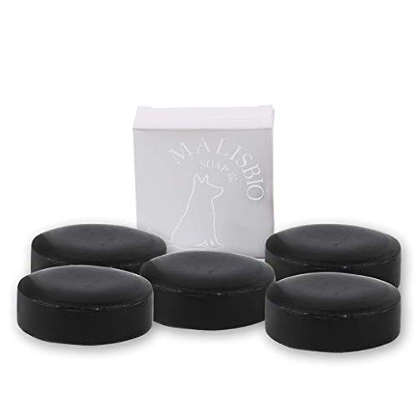 エンディング無効にする意味する【送料無料】炭石鹸 たっぷりお得な100g × 5個 においを忘れる! 男のデオドラント 固形 炭ソープ メンズ マリスビオ 5個組