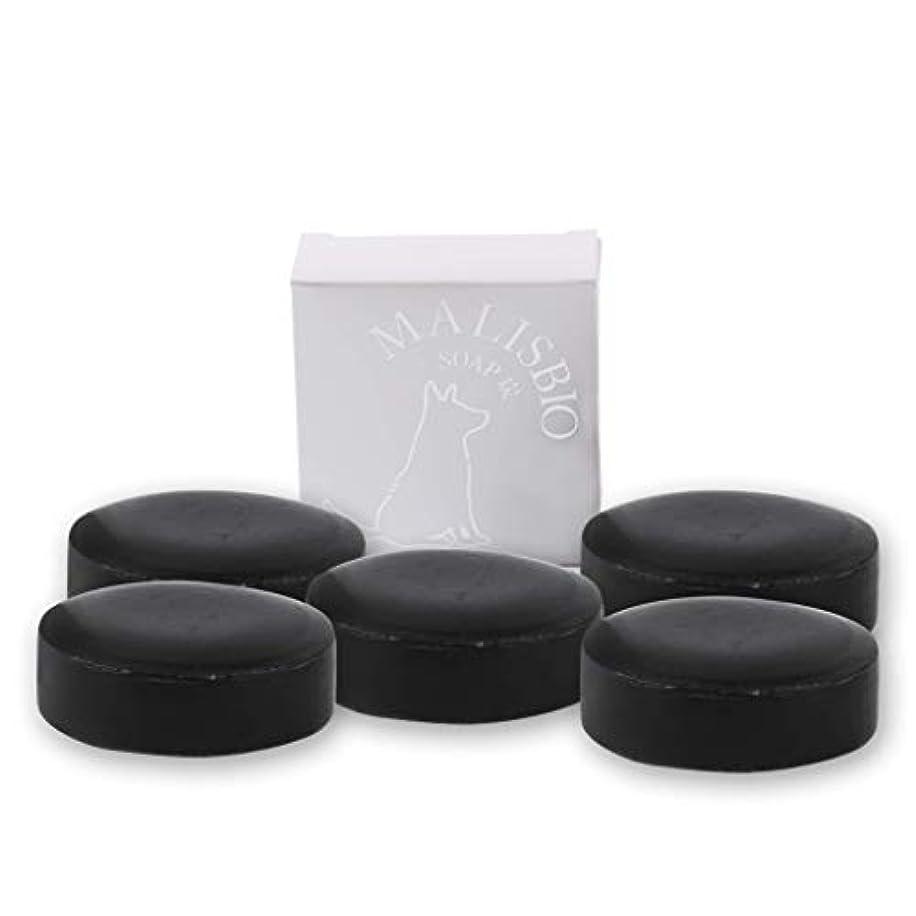 かろうじて退屈なまあ【送料無料】炭石鹸 たっぷりお得な100g × 5個 においを忘れる! 男のデオドラント 固形 炭ソープ メンズ マリスビオ 5個組