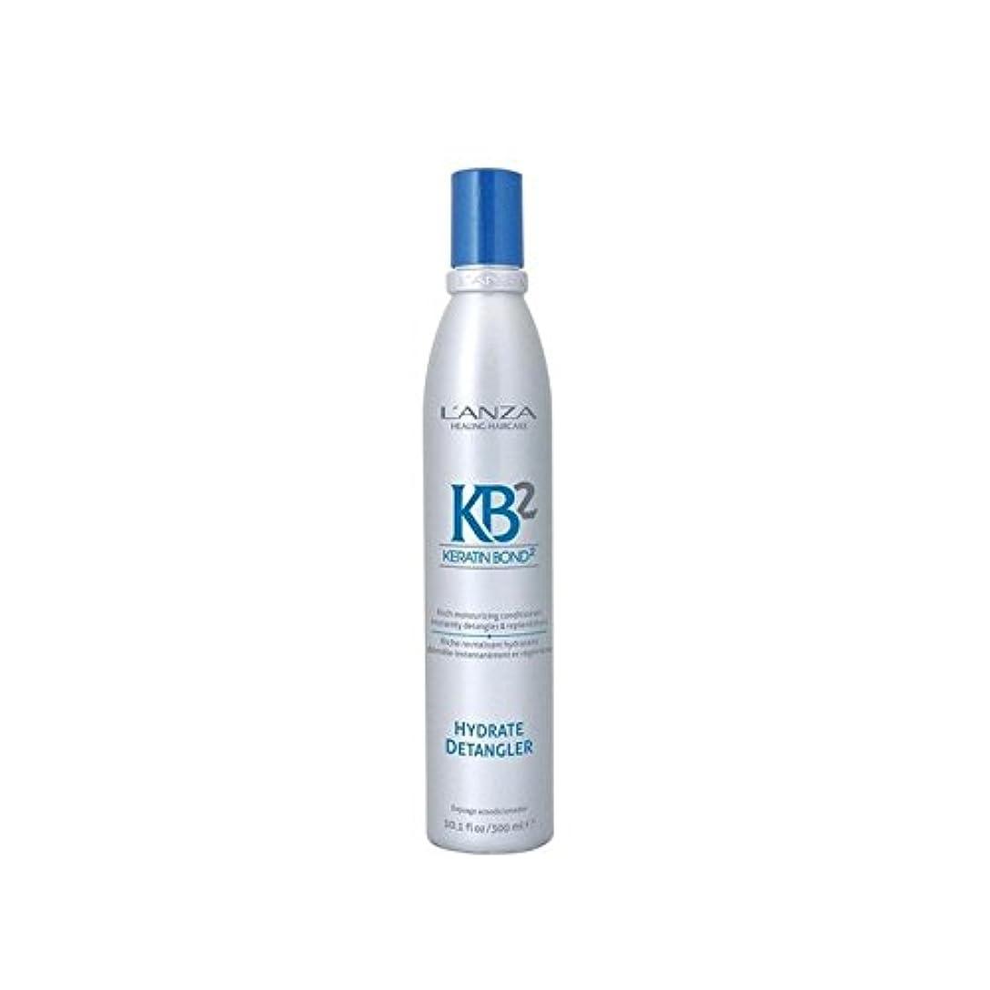 活気づけるコピー災難アンザ2和物(300ミリリットル) x2 - L'Anza Kb2 Hydrate Detangler (300ml) (Pack of 2) [並行輸入品]
