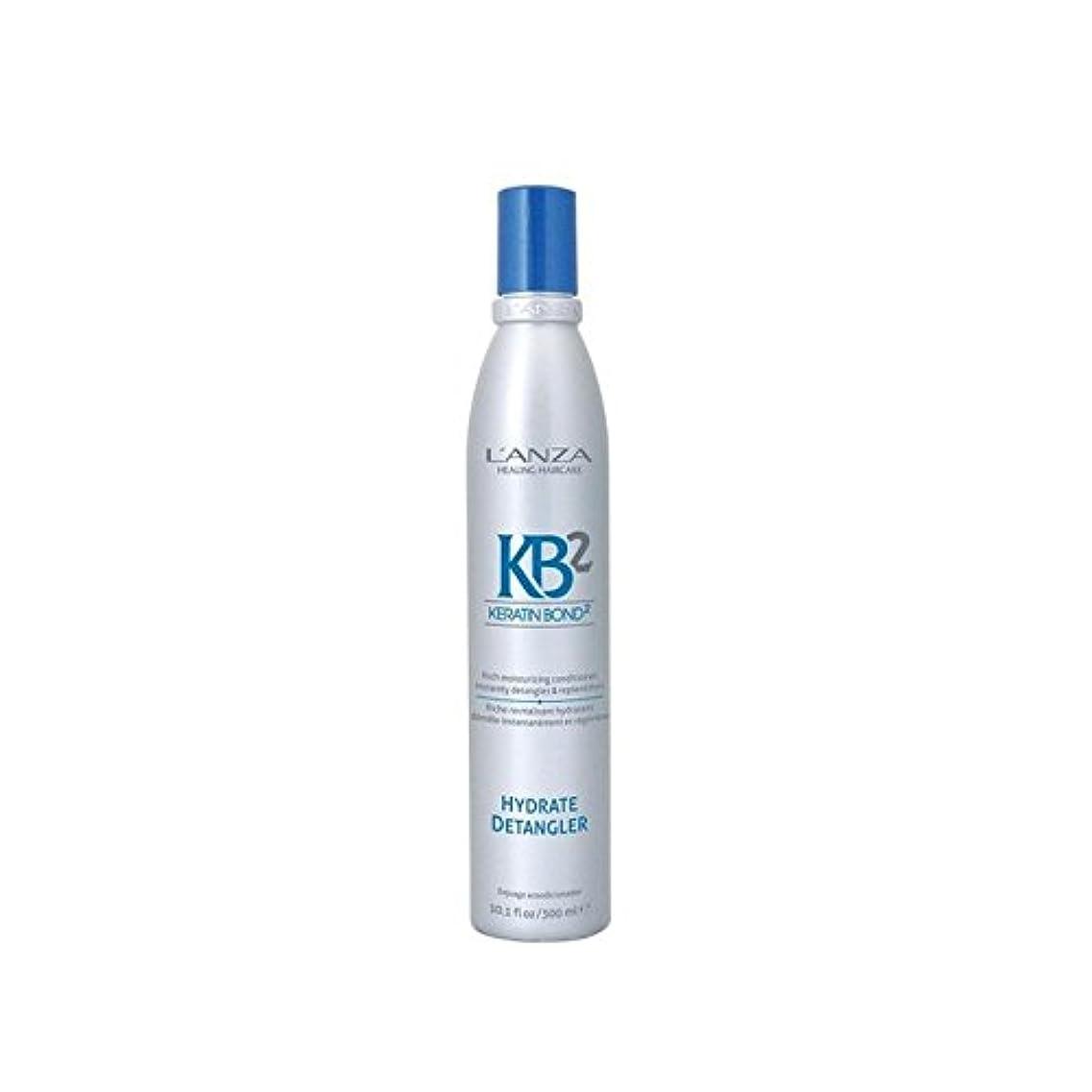 複雑なダーツ証言アンザ2和物(300ミリリットル) x2 - L'Anza Kb2 Hydrate Detangler (300ml) (Pack of 2) [並行輸入品]