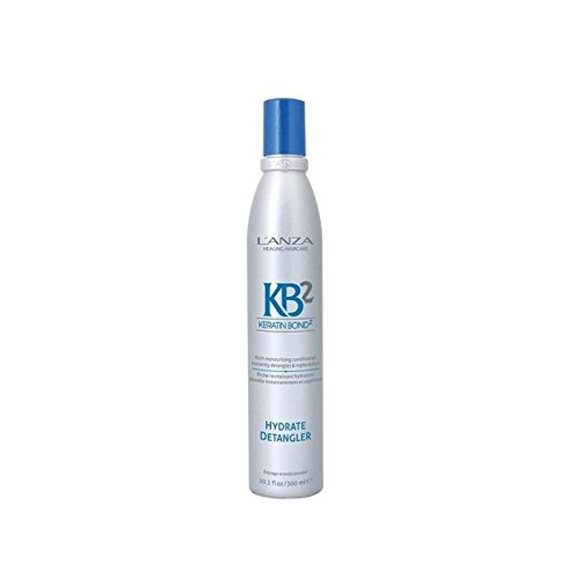 威する上級反論者アンザ2和物(300ミリリットル) x4 - L'Anza Kb2 Hydrate Detangler (300ml) (Pack of 4) [並行輸入品]