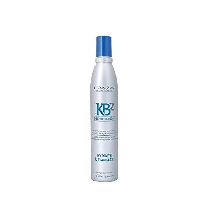 国民パステル恩赦L'Anza Kb2 Hydrate Detangler (300ml) (Pack of 6) - アンザ2和物(300ミリリットル) x6 [並行輸入品]