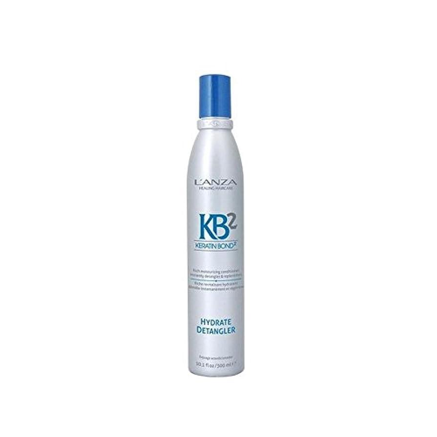 テレマコス圧倒する薬局アンザ2和物(300ミリリットル) x4 - L'Anza Kb2 Hydrate Detangler (300ml) (Pack of 4) [並行輸入品]