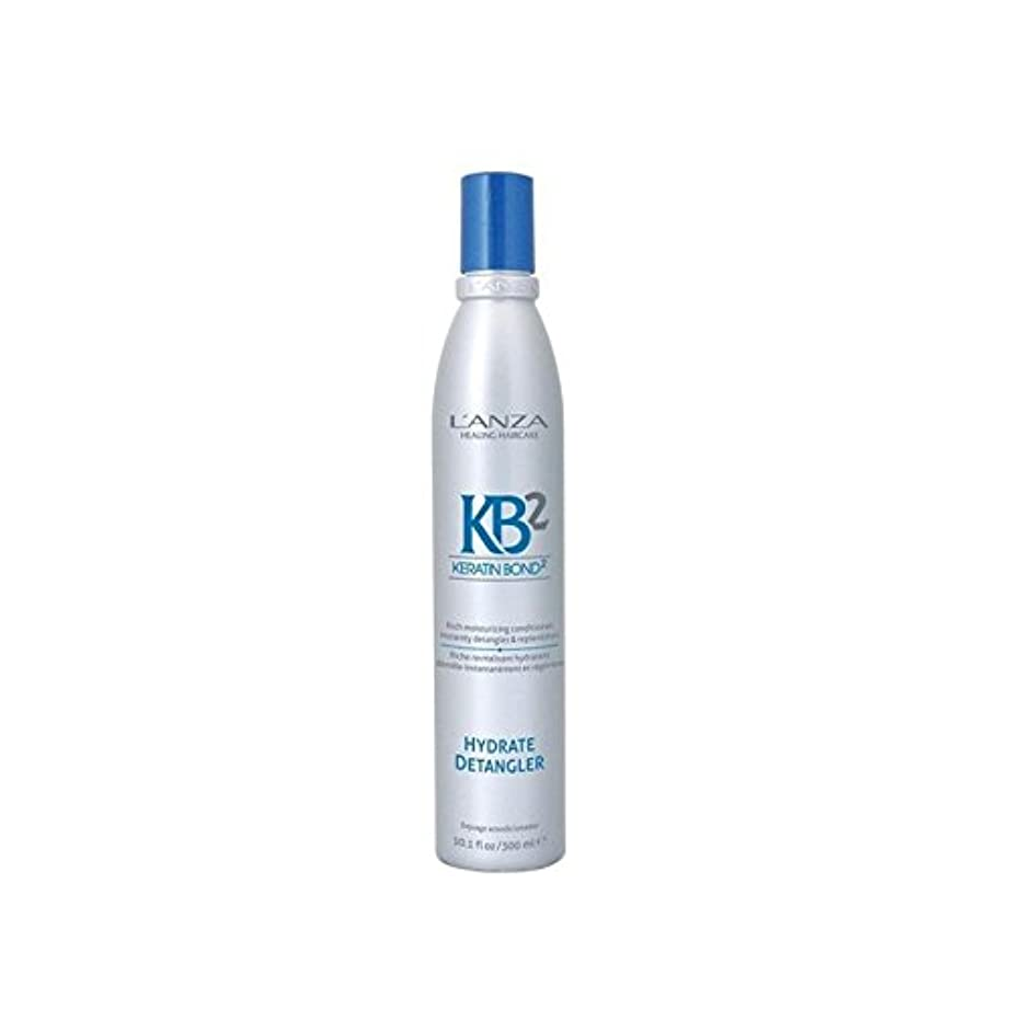 リハーサル不快受け皿アンザ2和物(300ミリリットル) x2 - L'Anza Kb2 Hydrate Detangler (300ml) (Pack of 2) [並行輸入品]