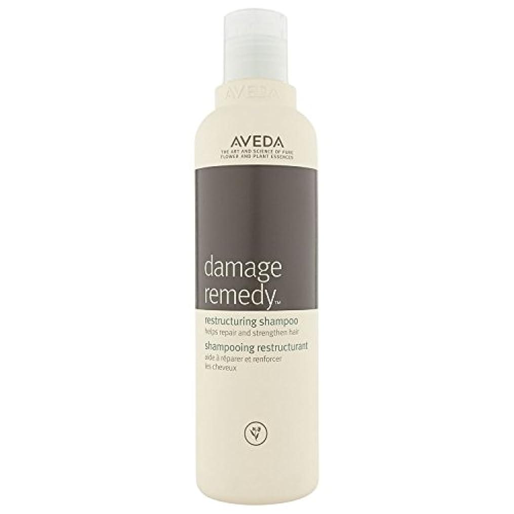 ティーンエイジャー発言する質素な[AVEDA] アヴェダダメージ救済再編シャンプー250ミリリットル - Aveda Damage Remedy Restructuring Shampoo 250 ml [並行輸入品]