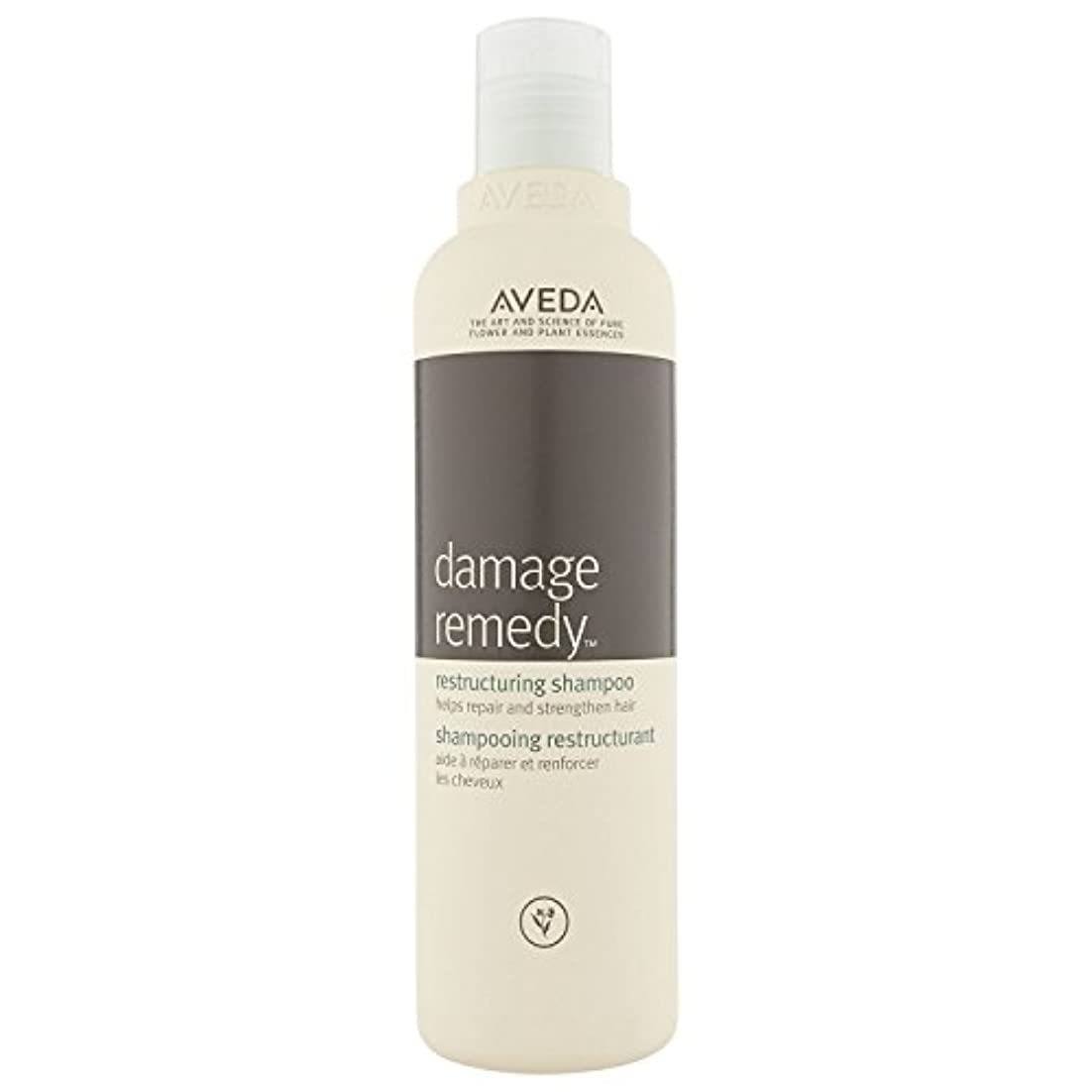 あいまい傾向がある冷淡な[AVEDA] アヴェダダメージ救済再編シャンプー250ミリリットル - Aveda Damage Remedy Restructuring Shampoo 250 ml [並行輸入品]
