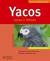 Yacos/ African Grey Parrots: Sanos y felices/ Healthy and Happy (Mascotas en casa/ Pets at Home)