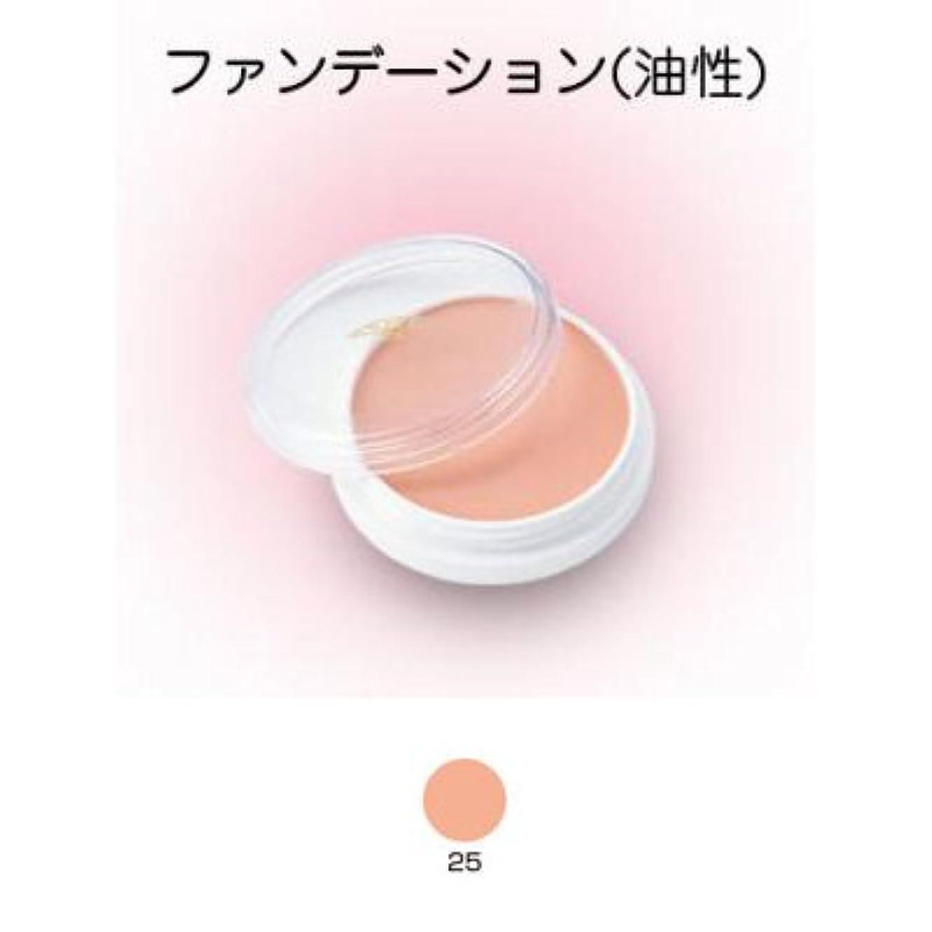 野菜検査レタスグリースペイント 8g 25 【三善】ドーラン