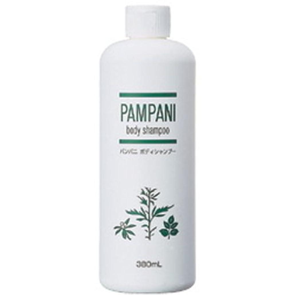 弱点公式リクルートパンパニ(PAMPANI) ボディシャンプー 380ml