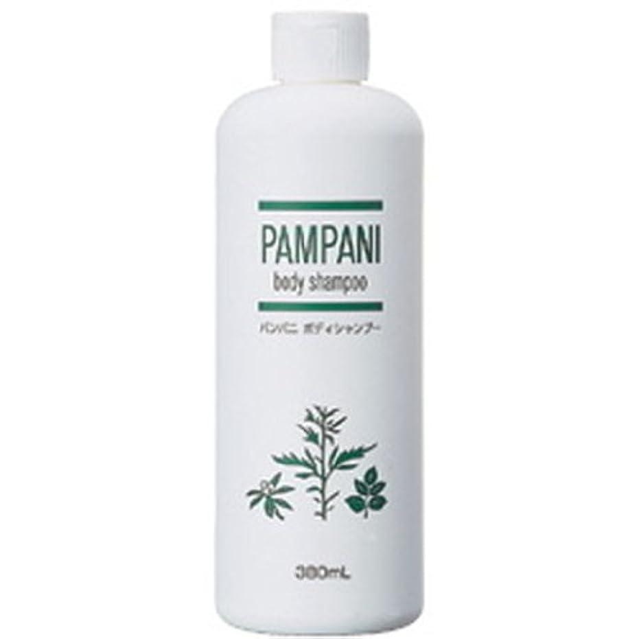 膨らませる糞タイピストパンパニ(PAMPANI) ボディシャンプー 380ml