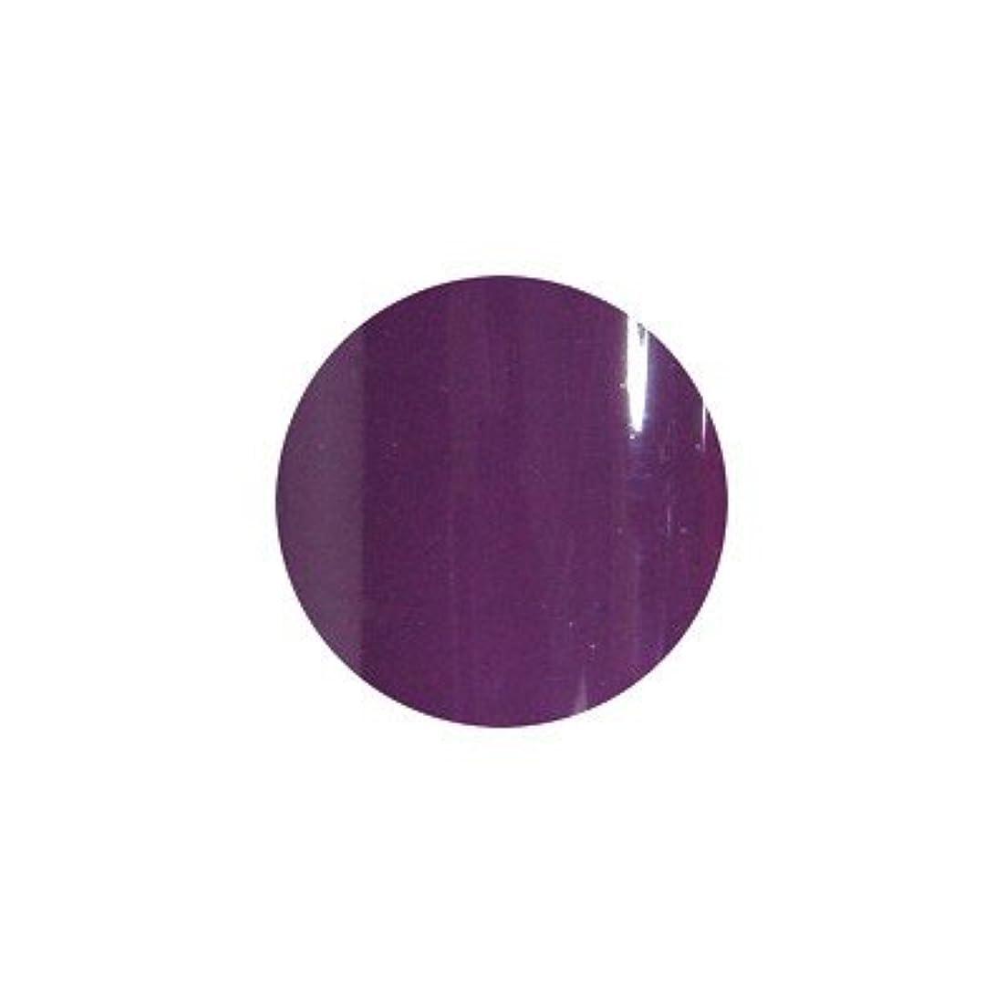 ハブブ複雑寄生虫sacra カラージェル No.026 紫式部