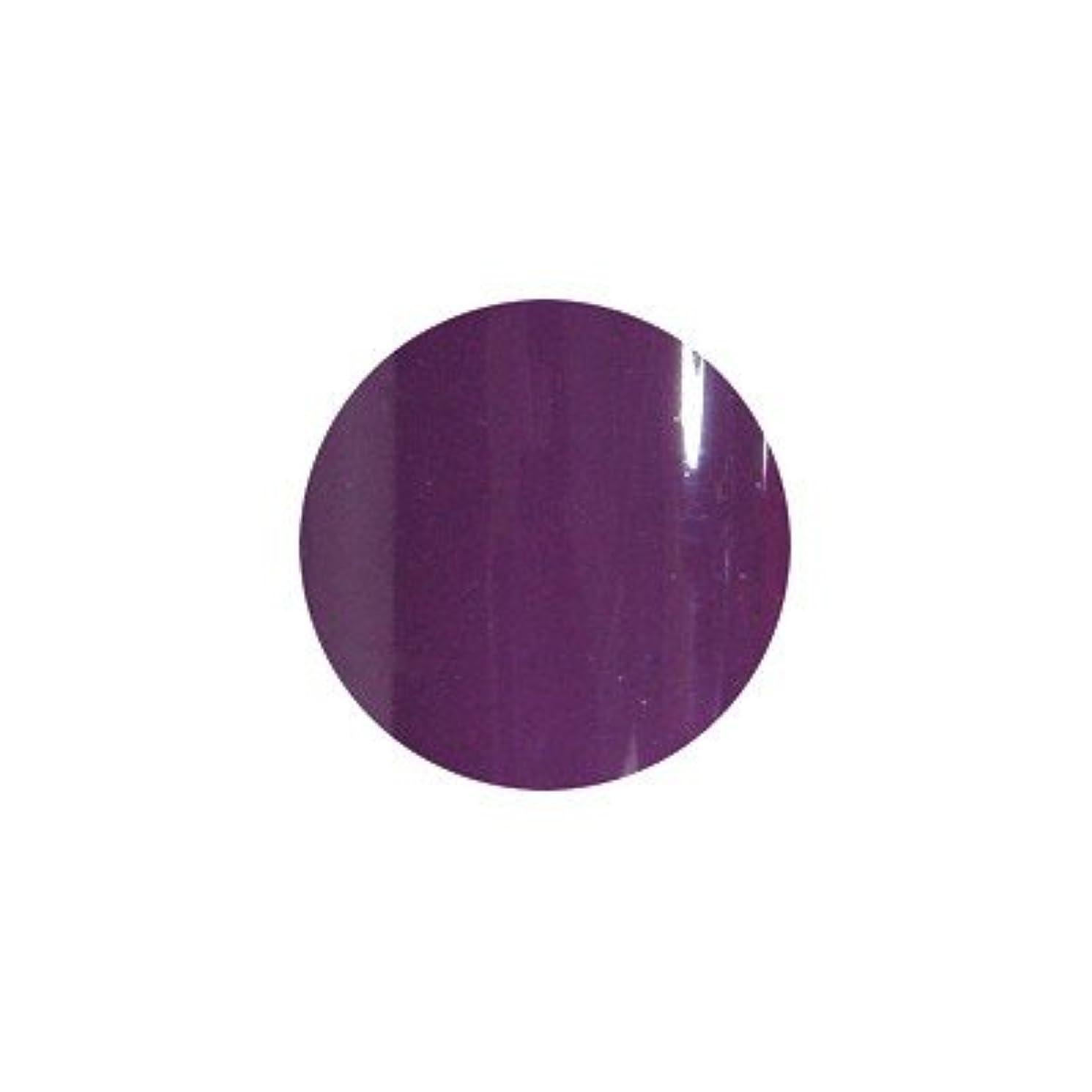 ポイントワードローブ落ち着かないsacra カラージェル No.026 紫式部