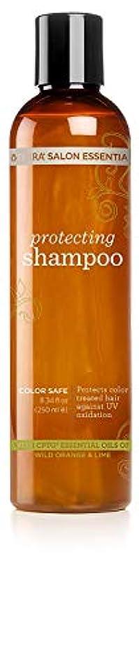 クリック石のグラフィックdoTERRA[ドテラ] サロンエッセンシャルズ プロテクティングシャンプー Salon Essentials Protecting Shampoo [250ml] [海外直送品]